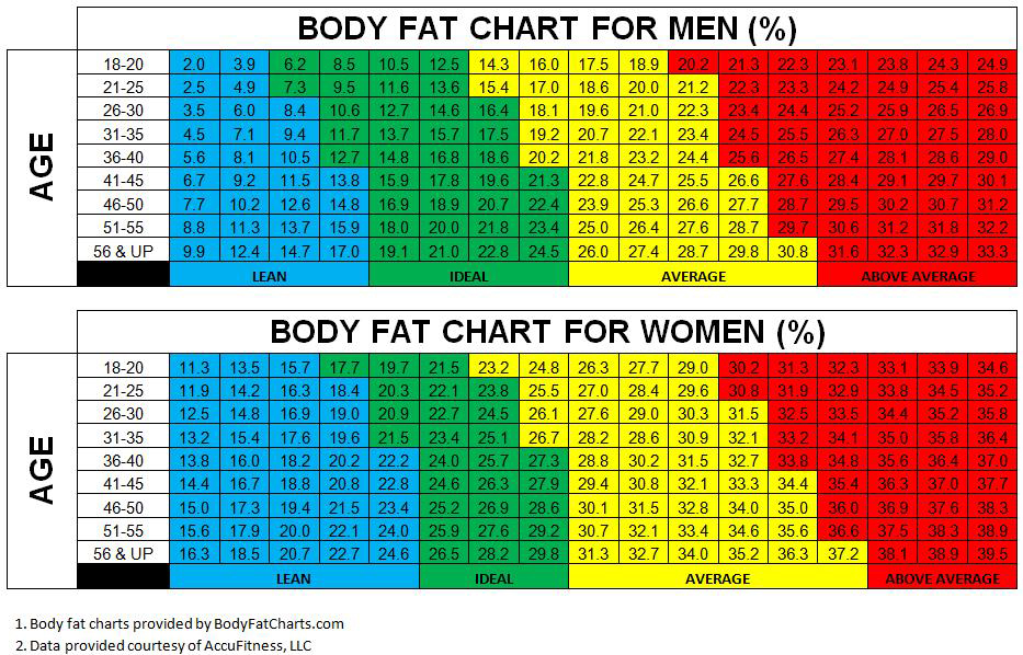 weight vs body fat percentage chart
